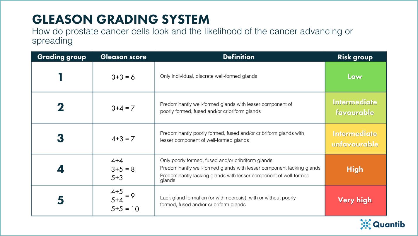 Gleason grading system cheat sheet