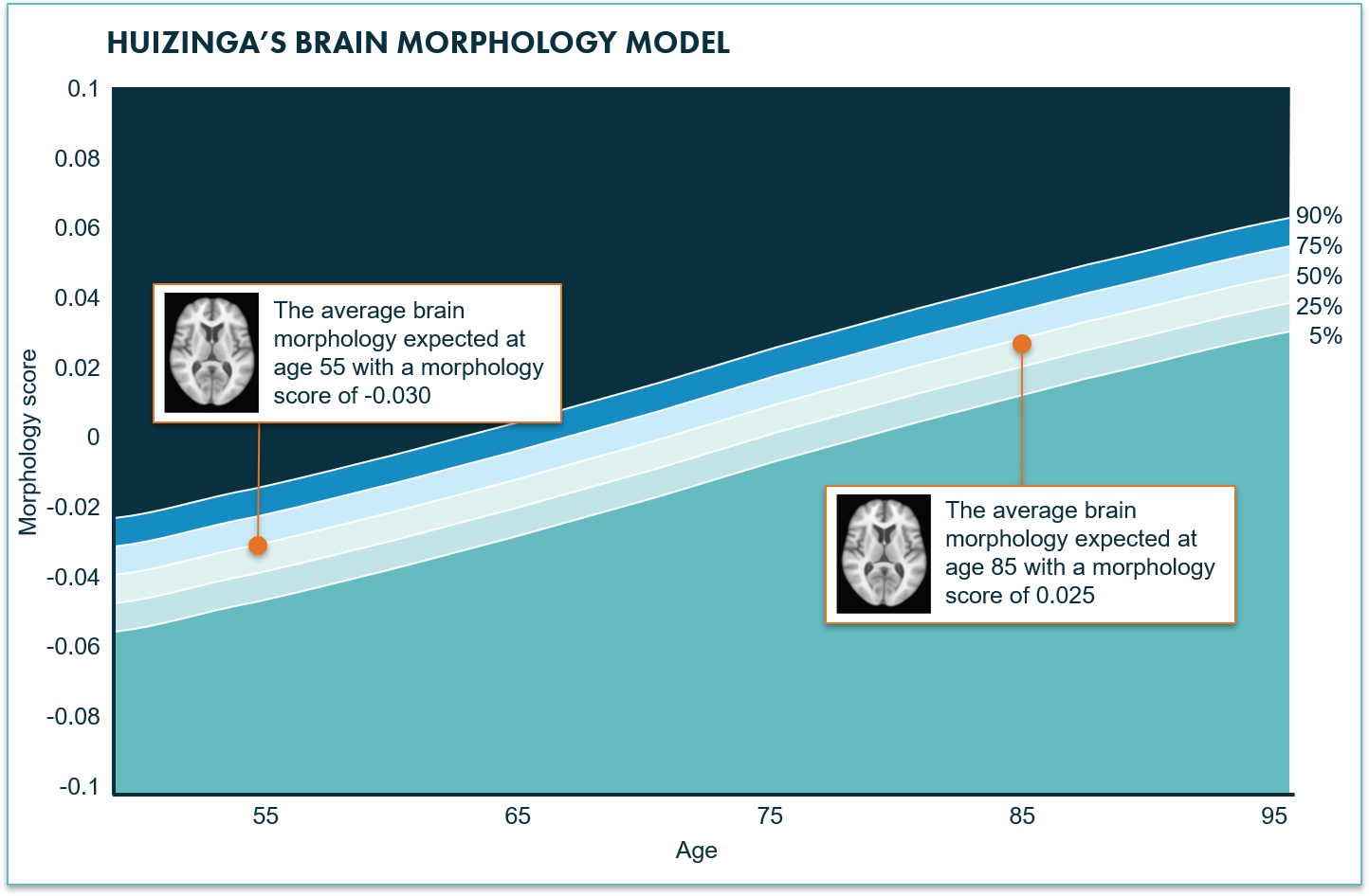 Reference data for aging brain - AI in radiology - Quantib