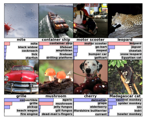 Results of the ImageNet image registration challenge