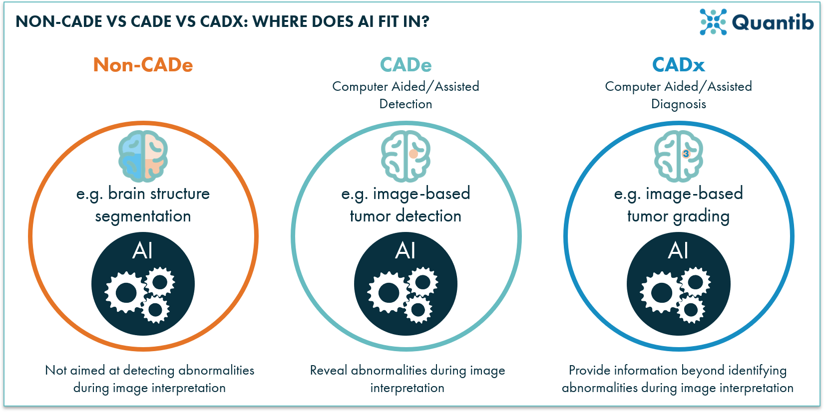 schematic figure explaining AI radiology software divided over the categories non-CADe, CADe, CADx
