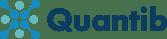 quantib logo for emails