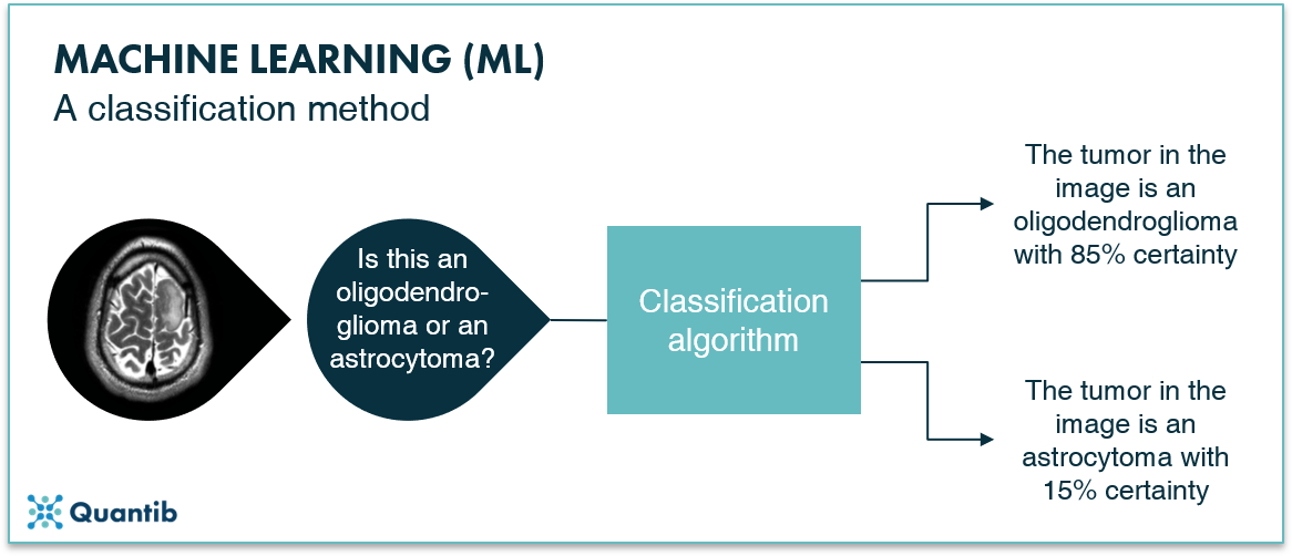 The ultimate guide to AI in radiology